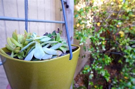 Do It Yourself Planters by Hanging Planters Do It Yourself A Diy Project For Your