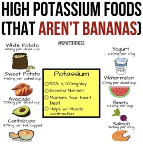 foods high in potassium for the 25 best high potassium foods ideas on