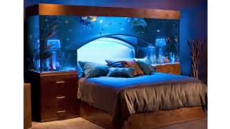 stunning aquarium bed redefines sleeping with the fishes