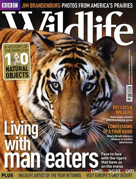 bbc wildlife november    magazines