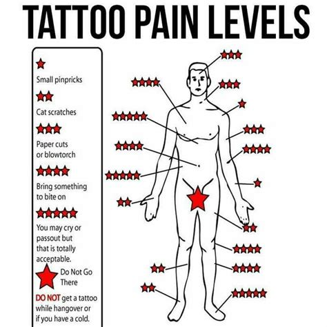 tattoo hurt chart best spots ideas on