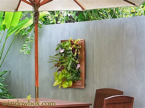 diy living wall systems vertical garden kits
