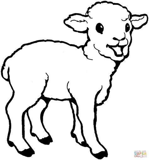 small sheep coloring page little lamb coloring page free printable coloring pages