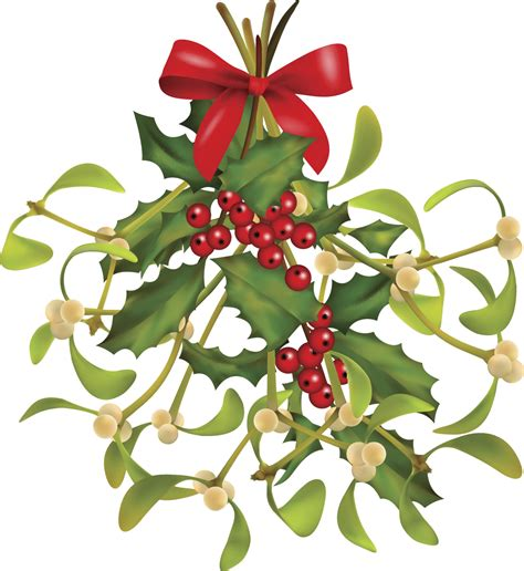 images of christmas mistletoe the curious history or kisstory of mistletoe