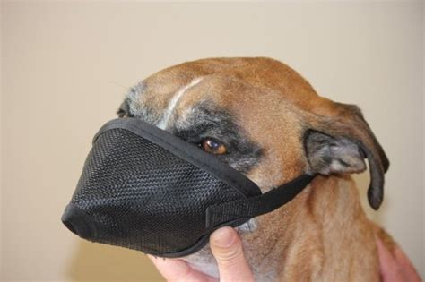 pug nose dogs mesh muzzle for nose flat faced dogs pug muzzle one size fits all
