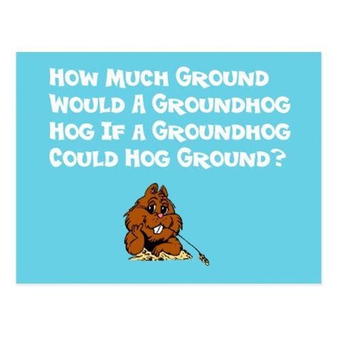 groundhog day celebration celebrate groundhog day postcard zazzle