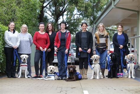 assistance dogs international international assistance week