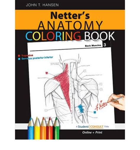 anatomy colouring book book depository netter s anatomy coloring book t hansen