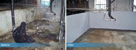 basement waterproofing aqua guard waterproofing