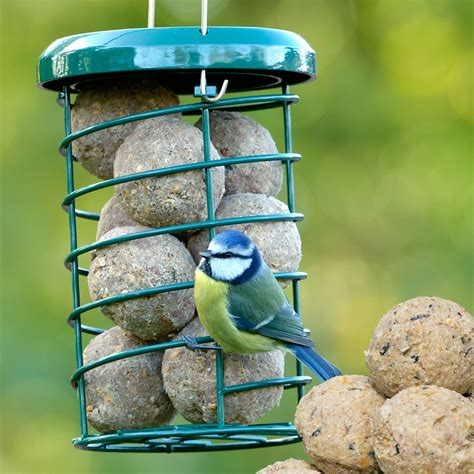 premium suet fat feeder rspb bird feeders rspb shop