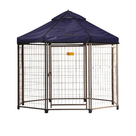 pet gazebo the advantek select pet gazebo medium 5 x 5 x 5