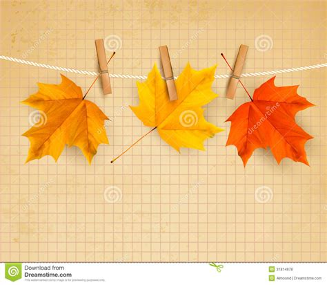 autumn background with leaves back to stock