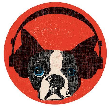 snarky puppy warppresenta entrevista con justin stanton de snarky puppy