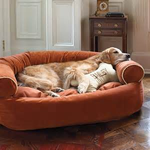 Personalized Dog Bed Personalized Bone Dog Pillow Siren Amp Sadie Pinterest