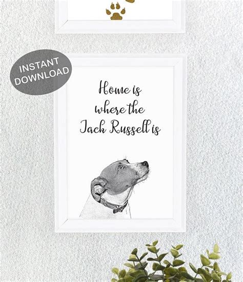 home    jack russell  print  great