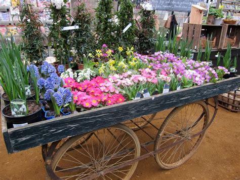 viridea vasi viridea cusago giardinaggio garden center viridea