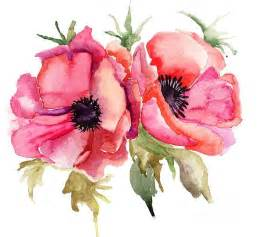 25 best ideas about flowers illustration on pinterest