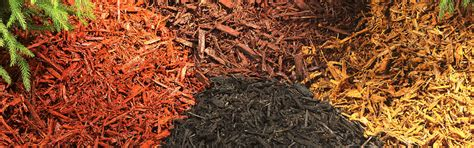 mulch colors mulching and winter protection essential steps to guard