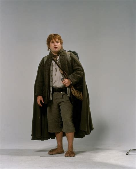 Promo Dominic Dress 38 best images about samwise gamgee or frodo baggins costume on lotr cloaks