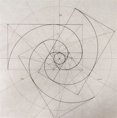 fibonacci spiral tattoo helical motion of our solar system as we spin along an arm