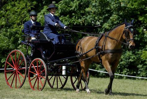 carrozze e cavalli foto carrozze e cavalli in cittadella 1 di 13 parma