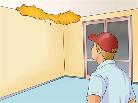 How To Get Rid Of A Beehive In Your Backyard by Easy Ways To Get Rid Of A Beehive Wikihow