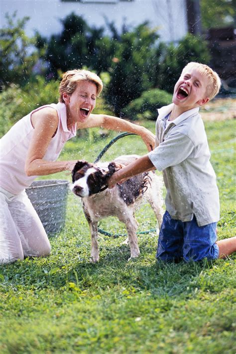 how to make bath time fun for dogs dog training nation giving a dog a bath bathing a dog