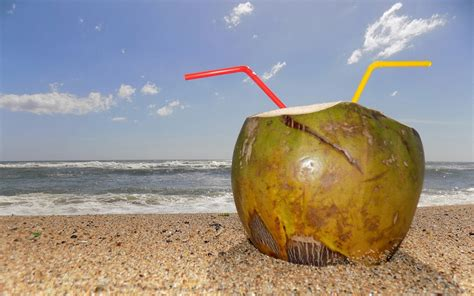 membuat skck berapa lama berapa lama air kelapa bisa disimpan dalam suhu ruang