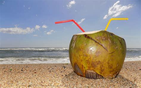 berapa lama membuat minyak kelapa berapa lama air kelapa bisa disimpan dalam suhu ruang
