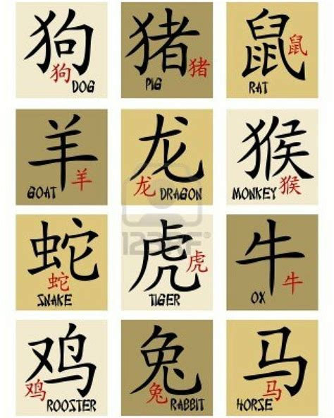 new year symbols names best 25 zodiac signs ideas on