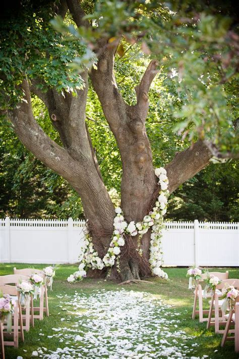 Best 25  Tree wedding ceremonies ideas on Pinterest