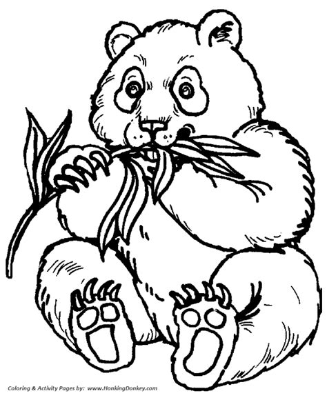 wild animal coloring pages panda bear feeding coloring