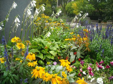Flowering Plants by About Flowering Plants Garden Guides