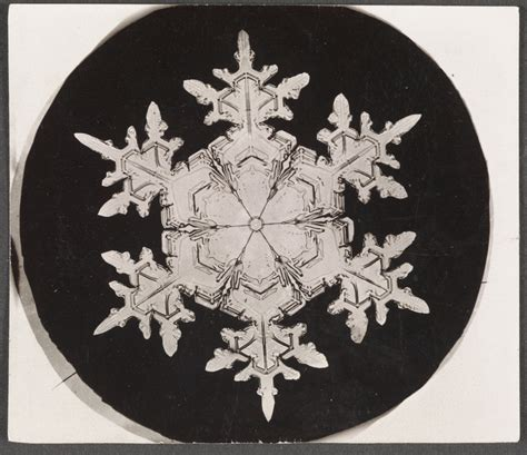 snowflake bentley prints microphotographs resurface after 150 years wired