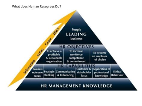Mba Hr In Middle East by Hr Middle East Overview