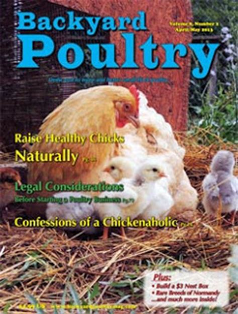 Backyard Chicken Magazine Backyard Chicken Thinking Out Loud Things My L O V E