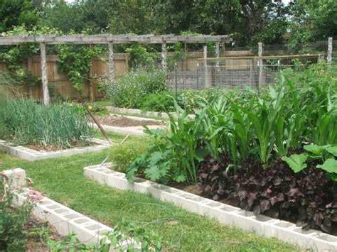 First A Dream Raised Bed No Till Gardens No Till Vegetable Garden