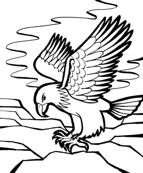 eagle coloring pages for adults eagle coloring page for adult school pinterest