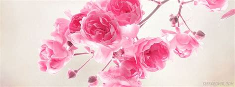 wallpaper flower wala 397 best images about facebook covers florals on pinterest