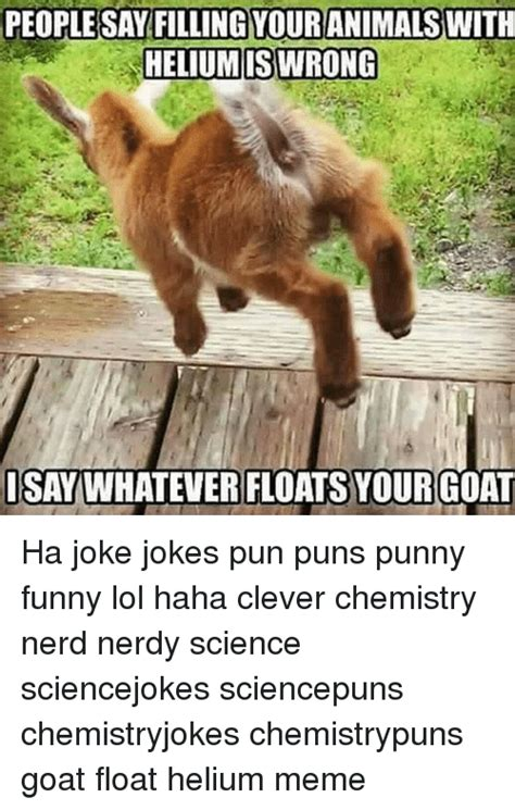 Meme Puns - people say fillingyouranimalswith heliumis wrong isay
