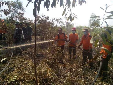 Undang Undang Kehutanan Dan Illegal Logging kementerian lingkungan hidup dan kehutanan republik indonesia
