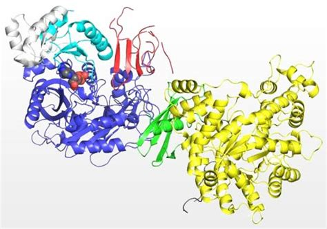 protein x crystallography ctsi taking a closer look at x crystallography x