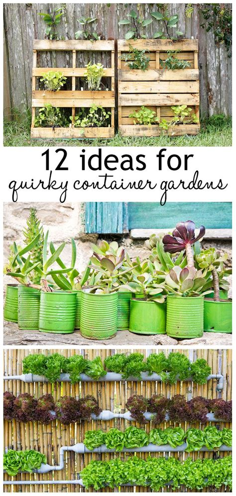Recycled Container Gardening Ideas 25 Best Ideas About Gardening On Pinterest Growing Vegetables How To Grow Vegetables