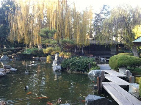 44 best images about japanese gardens on