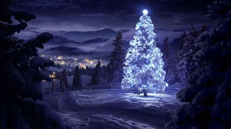 white christmas tree   nature hd snowy wallpaper beautiful nature landscapes desktop