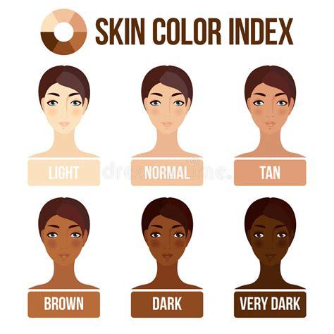 vector skin tone tutorial skin color index stock vector illustration of girl color
