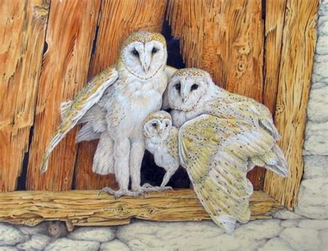 dennis mccallum barn owl family watercolor artwork
