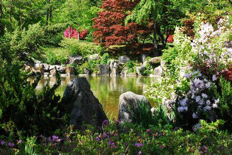 spring gardening pin spring garden gardening tips guides on pinterest