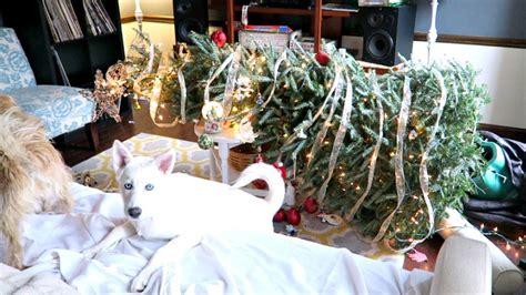 christmas tree disasters tree disaster