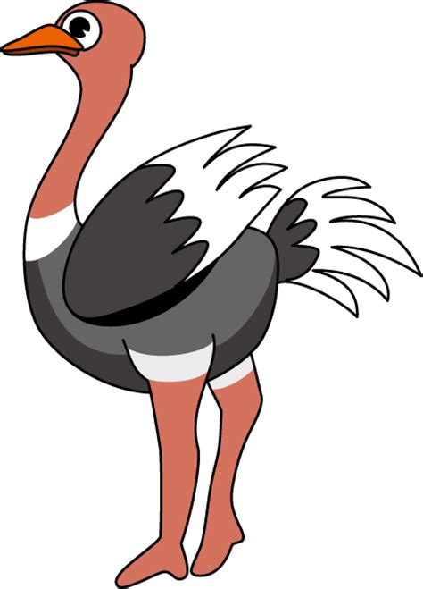ostrich clipart ostrich clip clipart best